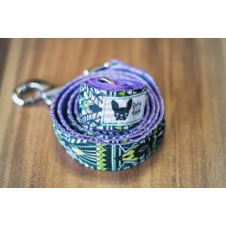 O dog design aztec leash