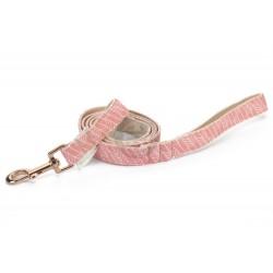 April & June Pink arrow leash
