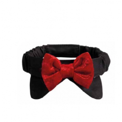 Camon red bow tie