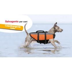 Camon life vest