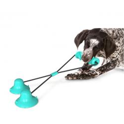 tapadókorongos kutyajáték